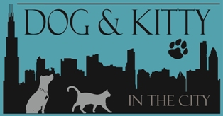Dog & Kitty in the City logo