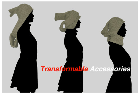 Transformable Accessories