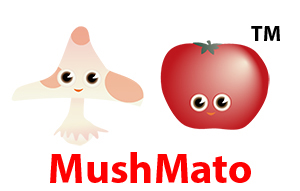 MushMato - a multimedia firm that creates books, toys, and cartoons for children centered on multiculturalism, city-living and art